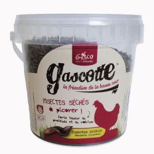 Insectes-séchés-300-grammes