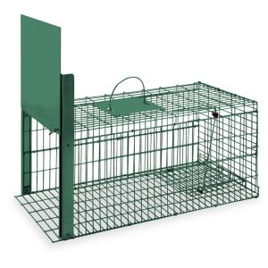 cage-piege-pliable-peinte-gros-mammifere-gaun