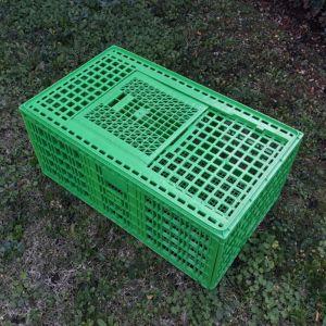 Cage-transport-grandes-volailles-96x57x42cm-2-portes-verte