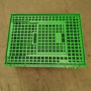 Cage-transport-poules-77x57x27cm-verte-vue-dessus