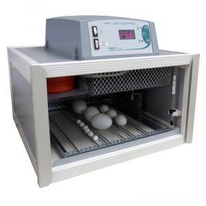 Couveuse automatique digitale poule Cip Cip 28 Mini LED 28 œufs - FIEM