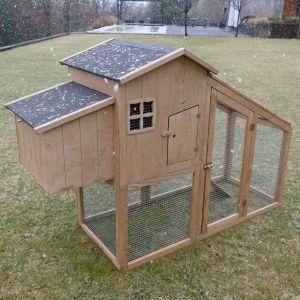 Poulailler Buckeye 2 à 4 poules bois FSC vue de trois quart sous la neige