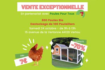 Chemin des Poulaillers x Poules pour Tous : Vente exceptionnelle de poules et poulaillers