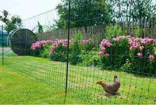 Création d'un enclos : comment installer mon grillage à poules ?
