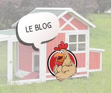 Blog du Chemin des poulaillers