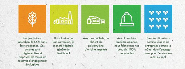 Processus de fabrication du bioplastique