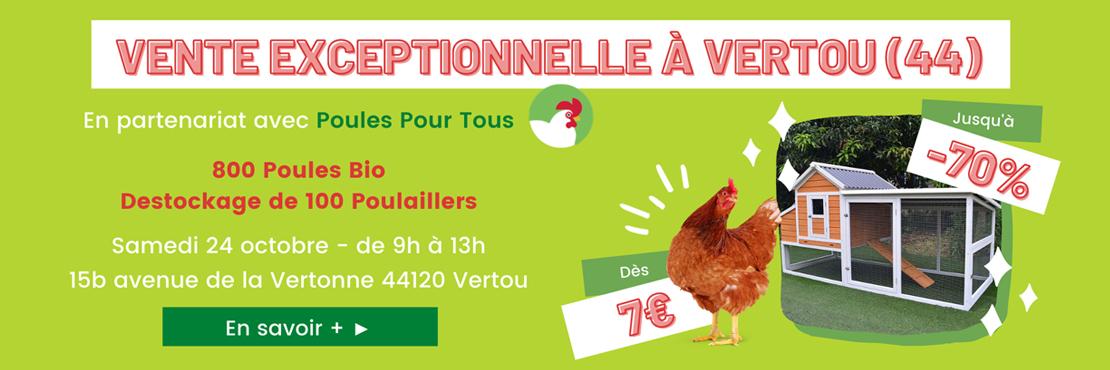 Vente exceptionnelle de poules et poulaillers